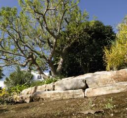 Lama-degli-ulivi-gallery-4